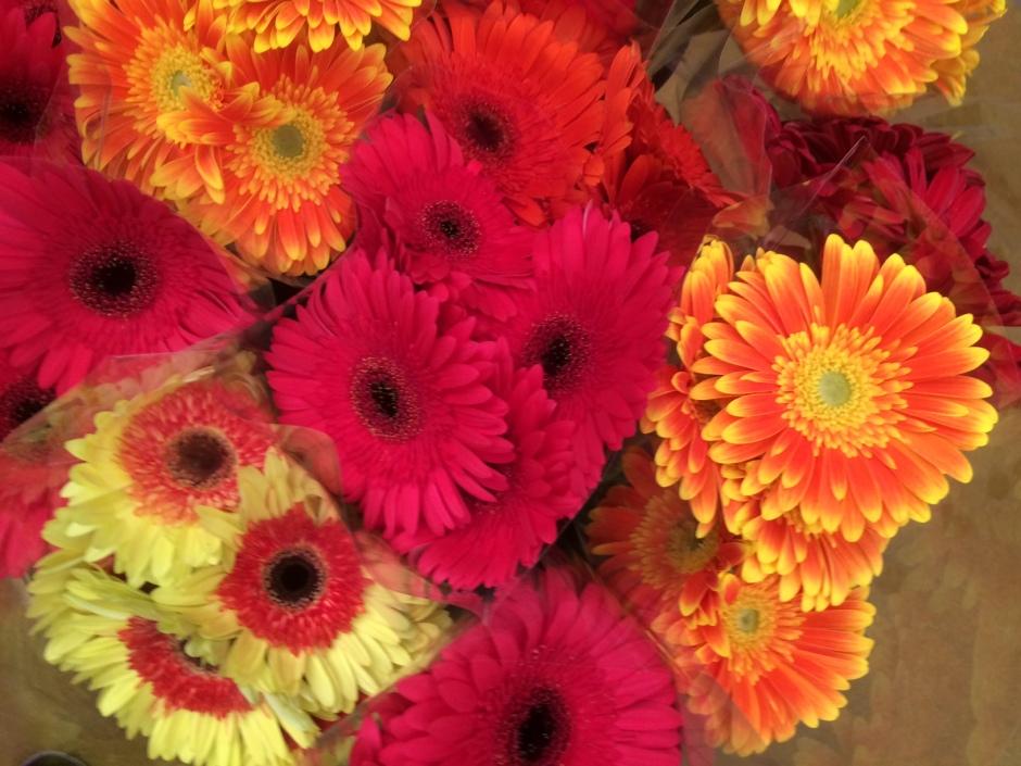 Flowers SFM
